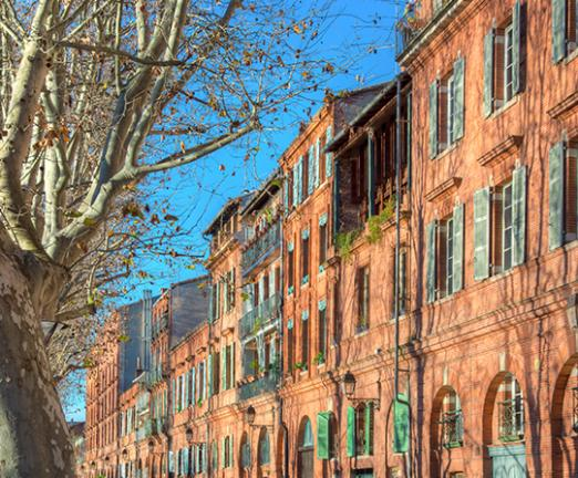 Maître DALIER avocate en droit de la famille à Toulouse